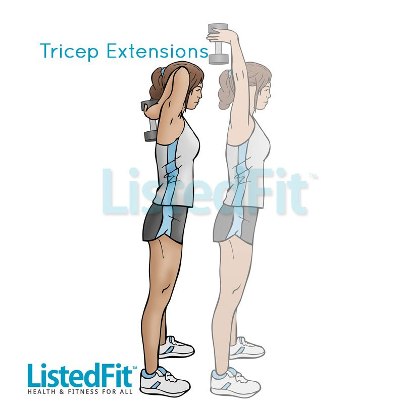 how to get rid of bingo wings fast Triceps-Extensions-LF